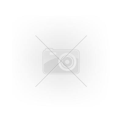 2 funkciós locsolópisztoly