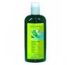 Logona Daily Care Bio Aloe&Verbéna sampon hajápoló szer