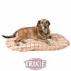 Trixie Jerry párna 80x55 cm (TRX36444)