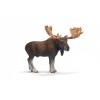 Schleich Jávorszarvas bika