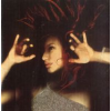 Tori Amos From The Choirgirl Hotel (CD)