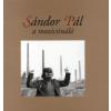 SÁNDOR PÁL A MOZICSINÁLÓ
