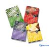 PIGNA HD Fruits füzet A5 42 lapos belső lapjai 90 g/m2 vonalas