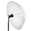 Profoto Umbrella Translucent XL (1,65m)