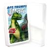 Dinoszauruszok kvartett kártya