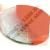 Tachográf korong tartó műanyag