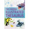 Usborne Illustrated Thesaurus