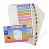 VIQUEL Regiszter, műanyag, A4, 12 részes, VIQUEL Intercolor, színes (IV158357)