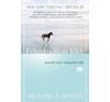 Michael A. Singers Felszabadított lélek ezoterika