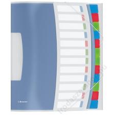 ESSELTE Előrendező, A4, 12 részes, műanyag, ESSELTE Vivida, áttetsző (E624030) aláírókönyv