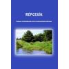 Répcesík - BKL