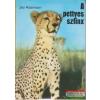 A pettyes szfinx