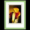 Hama Lindau képkeret 13x18 almazöld