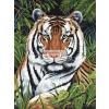 Tigris a sűrűben