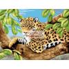 Leopard a fán