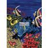 Kifestő készlet, 20x25cm - Víz alatti világ