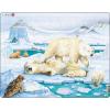 Larsen maxi puzzle 54 db-os Jegesmedvék FH5