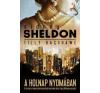 Sidney (Tilly Bagshawe) Sheldon A holnap nyomában regény