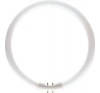 Philips MASTER TL5 Circular 60W/840 T5 [16mm] fehér körfénycső 2GX13, C-t5 izzó