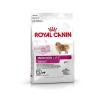 Royal Canin Royal Canin Indoor Life Adult Small Dog 1,5 kg