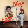 Roy Orbison The RCA Sessions CD