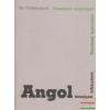 Tankönyvkiadó Vállalat Angol társalgási kifejezések