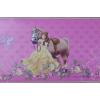 Disney hercegnő, öntapadós bordűr 20 cm széles