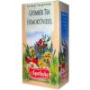 Apotheke Gyömbér és homoktövis tea 20db