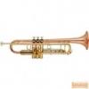 Garry Paul GP-6418 QSN B trombita