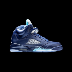Nike Air Jordan 5 Retro Hornets GS