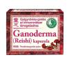 Dr. Chen Dr. Chen Ganoderma / reishi kapszula (60 db) táplálékkiegészítő