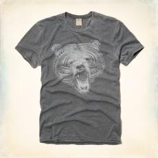 Hollister póló- medve mintás