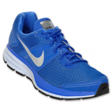 Nike Air Pegasus + 29 Shield
