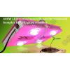 N/A 600W LED-es növénynevelő, növény termesztő komplex LED világítási rendszer
