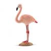SC 14758 Flamingó