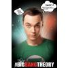 The Big Bang Theory Sheldon poszter