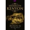 Sherrilyn Kenyon Bűnös éj