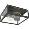 EGLO Falikar, Mennyezeti lámpa Kültéri ALAMONTE 1 2x60 W 94832 - Eglo
