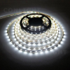 Conlight IP20 60 LED 3528 CW 6000-6500K 4,8W/m LED szalag