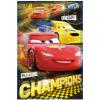 Disney Verda polár takaró 100x140 cm - Champions