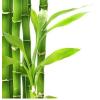 Bambuszrost liszt 500g Paleolit