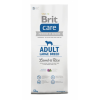 BRIT Care Hypo-allergenic Adult Large Breed Lamb&Rice 12 kg