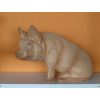 Disznó-ülő-40 cm
