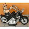 Harley Davidson-motoros