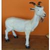Kecske-60 cm/fehér