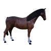 Ló-205 cm/barna