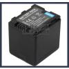 Panasonic HDC-HS900 Series 7.2V 2500mAh utángyártott Lithium-Ion kamera/fényképezőgép akku/akkumulátor