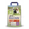 Dog Chow PURINA DOG CHOW MATURE 5+ - BÁRÁNY 2.5KG
