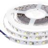 LEDvonal LED szalag , 5050 , 60 led/m , 14,4W/m , RGBW , W = hideg fehér