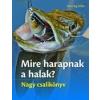 Saxum Kiadó Henning Stilke: Mire harapnak a halak? Nagy csalikönyv